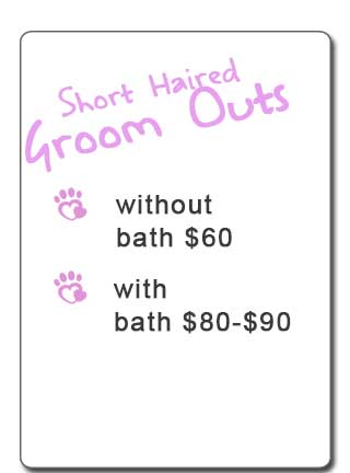 Pawz Ink Clipping Prices